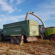 Mais häckseln mit John Deere und Brantner Kipper und Claas Jaguar 960